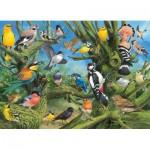 Eurographics-6000-0967 Joahn Francis - Garden Birds