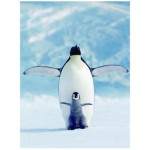 Eurographics-6000-1246 Pingouin et son petit