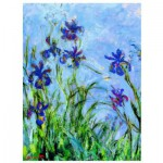 Eurographics-6000-2034 Claude Monet : Iris (détail)