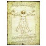Eurographics-6000-5098 Leonard de Vinci : L'homme de Vitruve