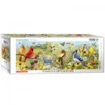 Eurographics-6010-5338 Oiseaux de Jardin