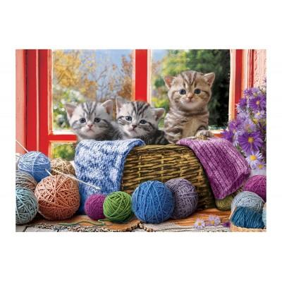 Eurographics-6500-5500 Pièces XXL - Knittin' Kittens