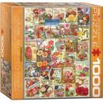 Eurographics-8000-0806 Catalogues de Graines de Fleurs