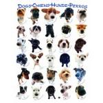 Eurographics-8500-1510 Race de de chiens