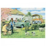 Jumbo-11072 Trevor Mitchell: Spring Lambs