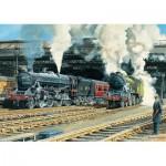 Jumbo-11120 Trevor Mitchell - Full Steam Ahead