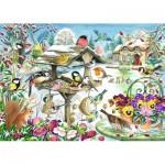 Jumbo-11183 Claire Comerford - Winter Garden Birds