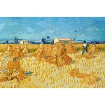 Grafika-Kids-00022 Pièces XXL - Vincent Van Gogh : Moissons en Provence, 1888