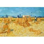 Grafika-Kids-00024 Vincent Van Gogh : Moissons en Provence, 1888