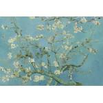 Grafika-Kids-00042 Vincent van Gogh : Amandier en Fleurs, 1890