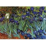 Grafika-Kids-00062 Van Gogh Vincent : Les Iris, 1889