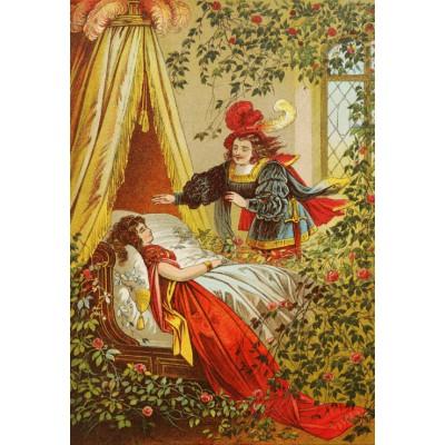 Grafika-Kids-00116 Pièces XXL - Carl Offterdinger : La Belle au Bois Dormant