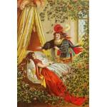 Grafika-Kids-00118 Carl Offterdinger : La Belle au Bois Dormant
