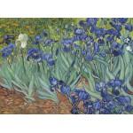 Grafika-Kids-00195 Van Gogh Vincent : Les Iris, 1889