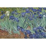 Grafika-Kids-00196 Pièces XXL - Van Gogh Vincent : Les Iris, 1889
