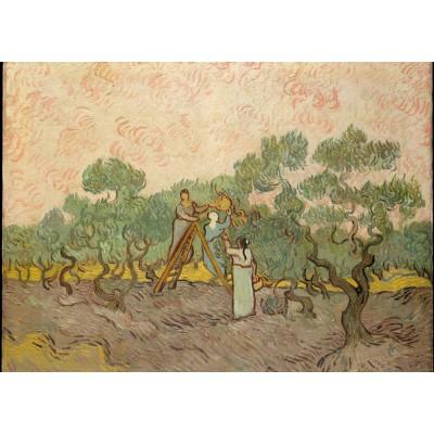 Grafika-Kids-00445 Van Gogh Vincent : Femmes ramassant des Olives, 1889