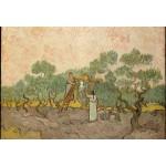 Grafika-Kids-00447 Pièces XXL - Van Gogh Vincent : Femmes ramassant des Olives, 1889