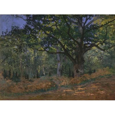 Grafika-Kids-00472 Claude Monet: Fontainebleau, 1865