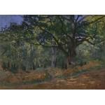 Grafika-Kids-00473 Claude Monet: Fontainebleau, 1865
