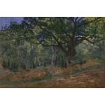 Grafika-Kids-00475 Pièces XXL - Claude Monet: Fontainebleau, 1865