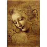 Grafika-Kids-00712 Léonard de Vinci : Visage de Giovane Fanciulla, 1508