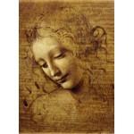 Grafika-Kids-00713 Léonard de Vinci : Visage de Giovane Fanciulla, 1508