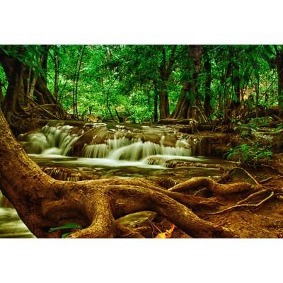 Grafika-Kids-00929 Pièces XXL - Cascade dans la Forêt