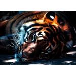 Grafika-Kids-00964 Pièces magnétiques - Tigre