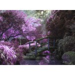 Grafika-Kids-00969 Pont Zen