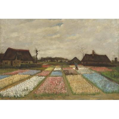 Grafika-Kids-01007 Pièces XXL - Vincent Van Gogh - Flower Beds in Holland, 1883