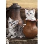 Grafika-Kids-01134 Chatons en pots