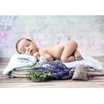 Grafika-Kids-01153 Konrad Bak: Baby Lavender