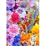 Grafika-Kids-01171 Pièces magnétiques - Explosion de Fleurs
