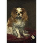 Grafika-Kids-01255 Edouard Manet : Un Cavalier King Charles Spaniel, 1866
