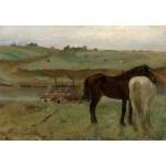 Grafika-Kids-01279 Edgar Degas : Chevaux dans un Pré, 1871