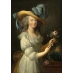 Grafika-Kids-01425 Elisabeth Vigée-Lebrun : Marie-Antoinette, 1783