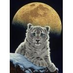 Grafika-Kids-01654 Schim Schimmel - Moon Leopard