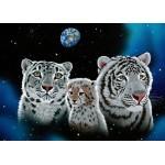 Grafika-Kids-01662 Pièces magnétiques - Schim Schimmel - Gentle Family