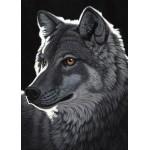 Grafika-Kids-01702 Pièces magnétiques - Schim Schimmel - Night Wolf