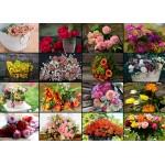 Grafika-Kids-01940 Pièces magnétiques - Collage - Fleurs