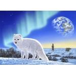 Grafika-Kids-01949 Pièces magnétiques - Schim Schimmel - Artic Fox