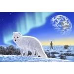 Grafika-Kids-01951 Pièces XXL - Schim Schimmel - Artic Fox