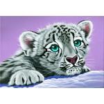 Grafika-Kids-01954 Schim Schimmel - Sambuca's Friend