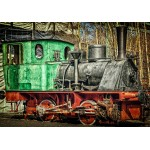 Grafika-Kids-01960 Locomotive