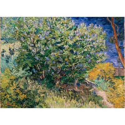 Grafika-Kids-02038 Vincent Van Gogh - Lilas, 1889