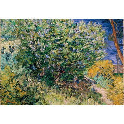 Grafika-Kids-02039 Vincent Van Gogh - Lilas, 1889