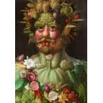 Grafika-00019 Giuseppe Arcimboldo : Rudolf II of Habsburg as Vertumnus