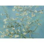 Grafika-00062 Vincent van Gogh : Amandier en Fleurs, 1890