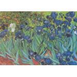Grafika-00074 Vincent Van Gogh : Saint-Remy - Les Iris, 1889