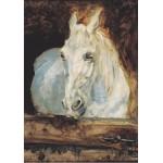 Grafika-00170 Henri de Toulouse-Lautrec : Cheval Blanc Gazelle, 1881